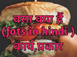 वसा क्या हैं(fats in hindi ) कार्य,प्रकार