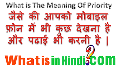 What is the meaning of Priority in Hindi