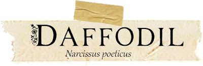 Magical and Medicinal Uses of Daffodil. Includes FREE BOS page!