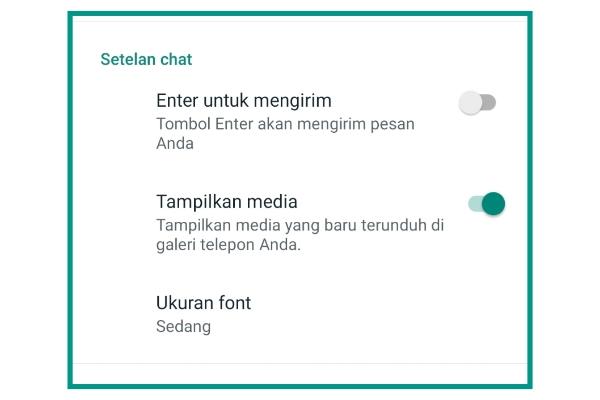 Cara Mengatasi Video Whatsapp Tidak Bisa Di Simpan Ke Galeri