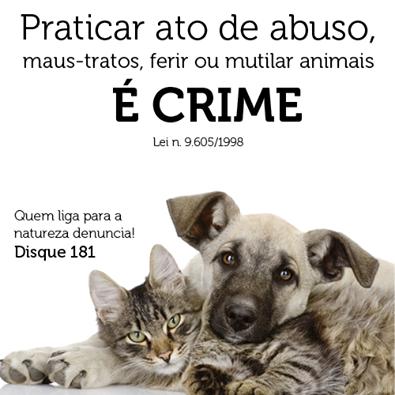 Resultado de imagem para maltratar animal é crime