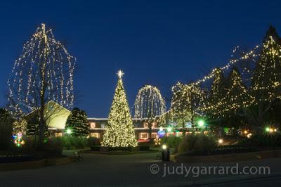 Downtown City of Smyrna Christmas Tree