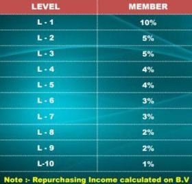 Repurchase Income