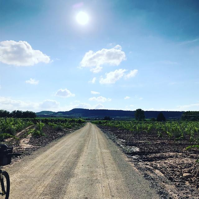 Alquiler de bicicletas en La Rioja