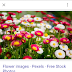 Google Tweaks Mobile Search UI