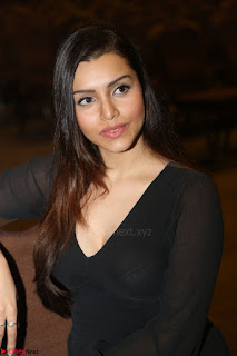 Kyra Dutta in black At Rogue Movie Audio Launch ~  012.JPG