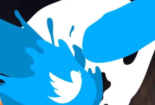 Cartoon Liquid Logo 24093682 Videohive