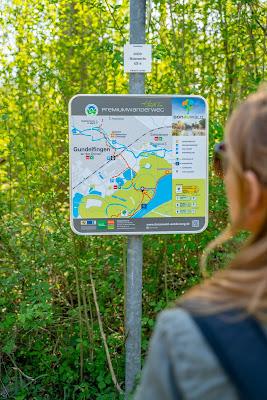 Premiumwanderweg DonAUwald | Etappe 2 von Offingen nach Gundelfingen 17