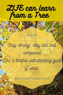 Life lessons poetry - MeenalSonal