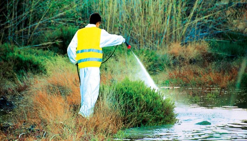 Μειωμένα τα κουνούπια στην περιοχή της Λάρισας