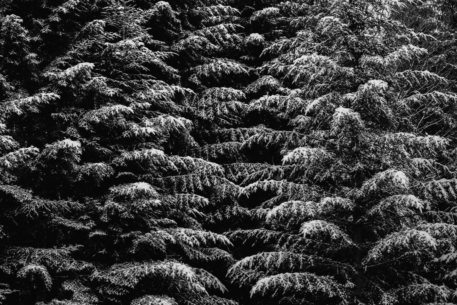 Beskid Niski z początkiem zimy