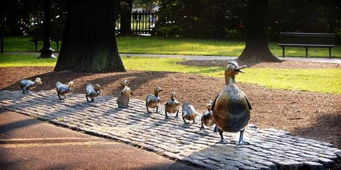 """These ducklings crossing the road after their duck mom can be seen in the Boston Public Garden. The sculptural composition in bronze was made by sculptor Nancy Sheng, who depicted the heroes of the popular children's book """"Give Way to Ducklings"""" Robert McCloskey. An exact copy of it can be seen in the square near the Novodevichy Convent in Moscow."""