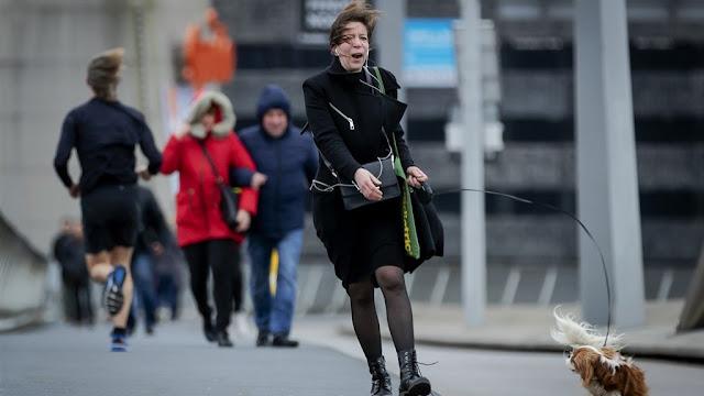 """العاصفة """"إلين"""" في طريقها إلى هولندا خلال أيام"""