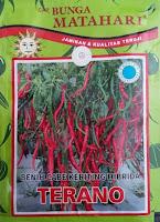 cabe keriting terano, budidaya cabai, manfaat cabe, jual benih cabe hibrida, toko pertanian, toko online, lmga agro