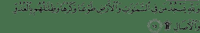 Surat Ar Ra'd Ayat 15