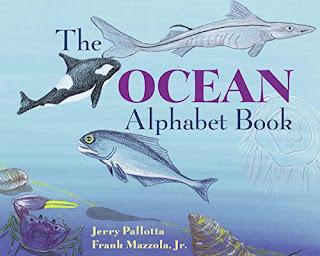 ocean alphabet book
