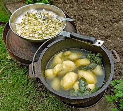 patate en tecia