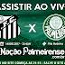 Assistir AO VIVO! Santos x Palmeiras | 14/06/2017