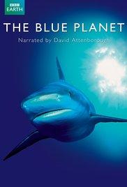 The Blue Planet S01E01 Ocean World Online Putlocker