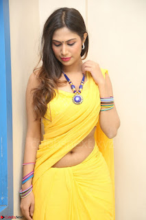 Nishigandha in Yellow backless Strapless Choli and Half Saree Spicy Pics 138.JPG