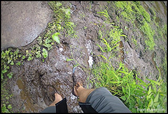 shi shi hiking trail
