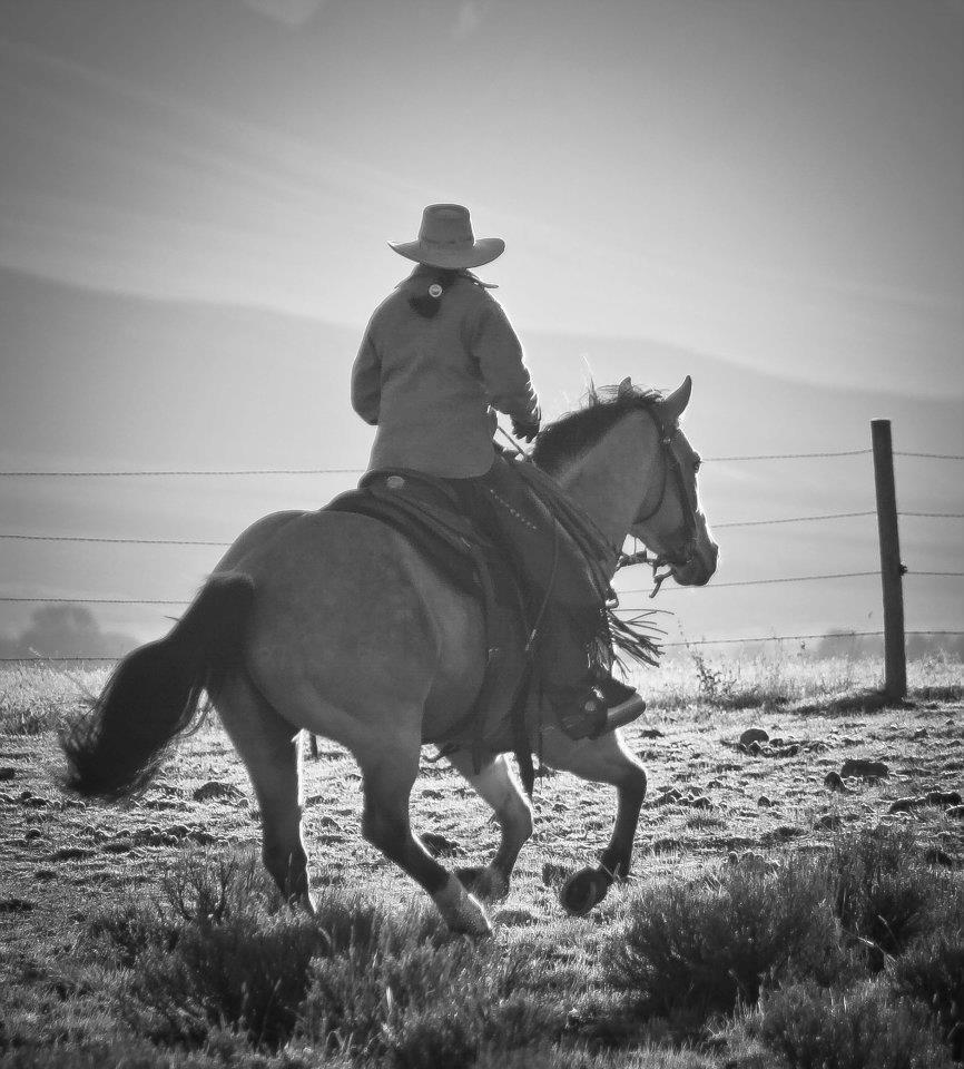 El Hombre Que Mato A Liberty Valance Cowboys La