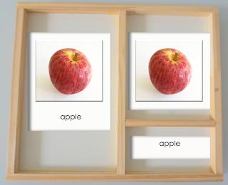 classification cards montessori