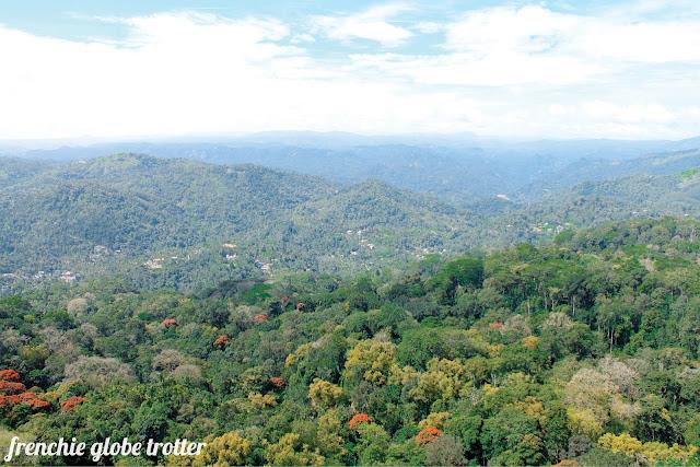 Pothamedu Viewpoint, Munnar - Kerala