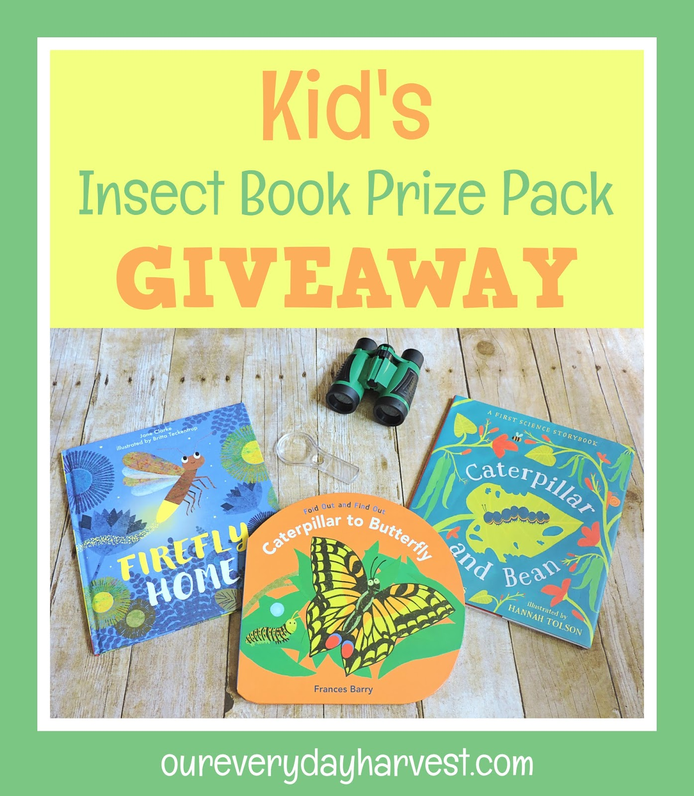 Kid's Insect Book Prize Pack Giveaway