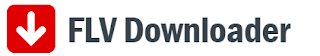 Download FLV Downloader Offline Installer 2017