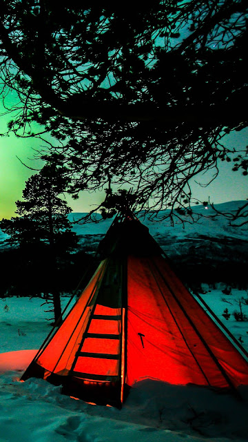 Camping, Night, Northern Lights, Tent, Camping, Winter