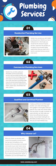 Plumbing Services Chicago