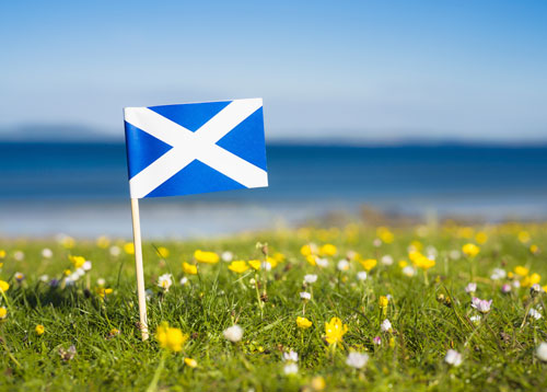 Happy St. Andrews Day 2018 Quotes and Messages
