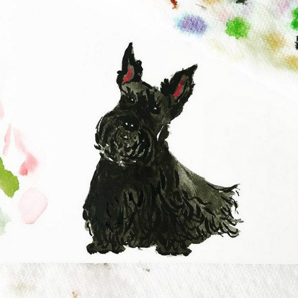 watercolor Scottish Terrier