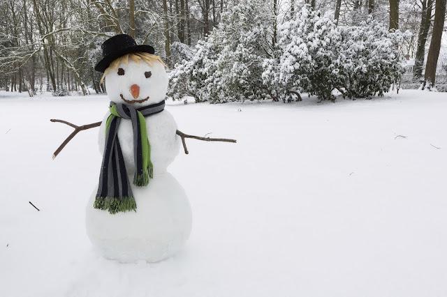 home,home and living,snowman, christmas, winter, snowman remova