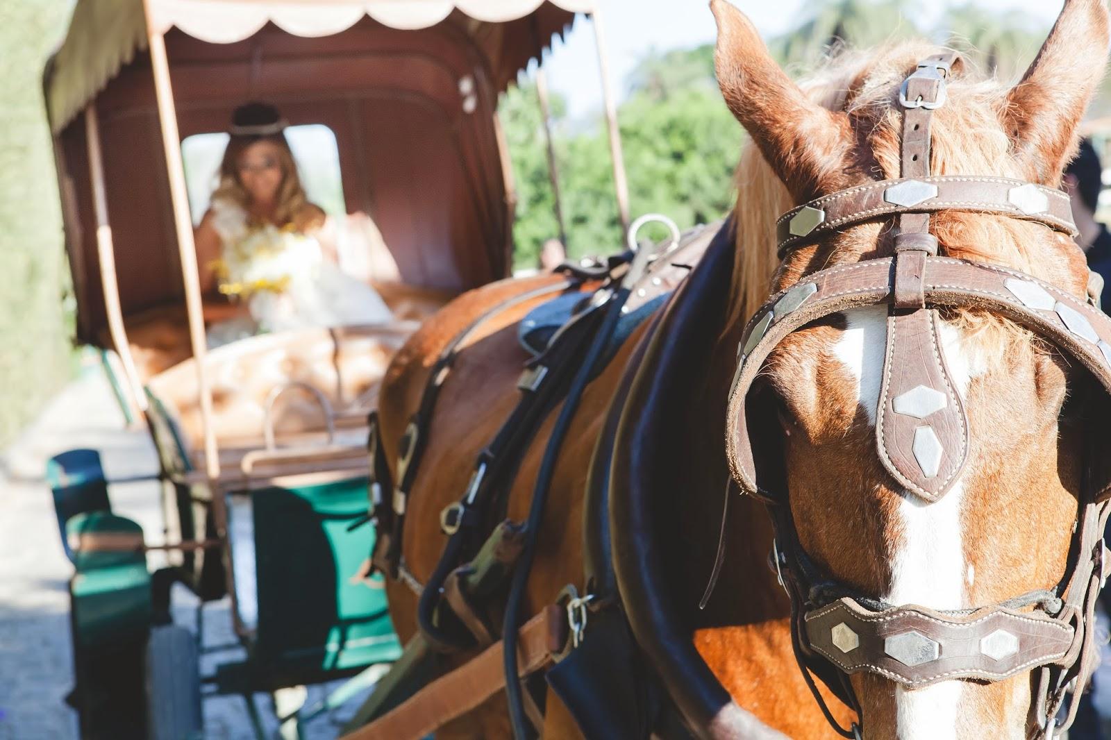 entrada noiva - noiva - charrete - carruagem - carro noiva - casamento de dia - casamento ao ar livre