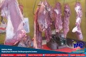 Naiknya Harga Daging Sapi di Jakarta Tak Berpengaruh di Jember