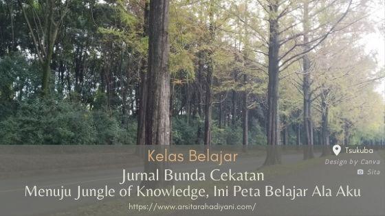Jurnal Bunda Cekatan. Menuju Jungle of Knowledge, Ini Peta Belajar Ala Aku
