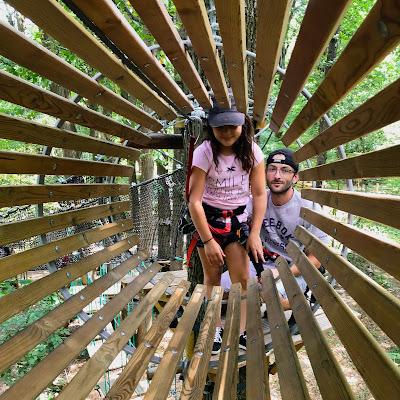 module en bois d'accro-branche