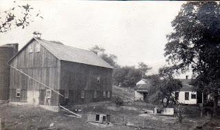 Shagbark Hickory trees pasture, 1920, Hickory Hurst Farm
