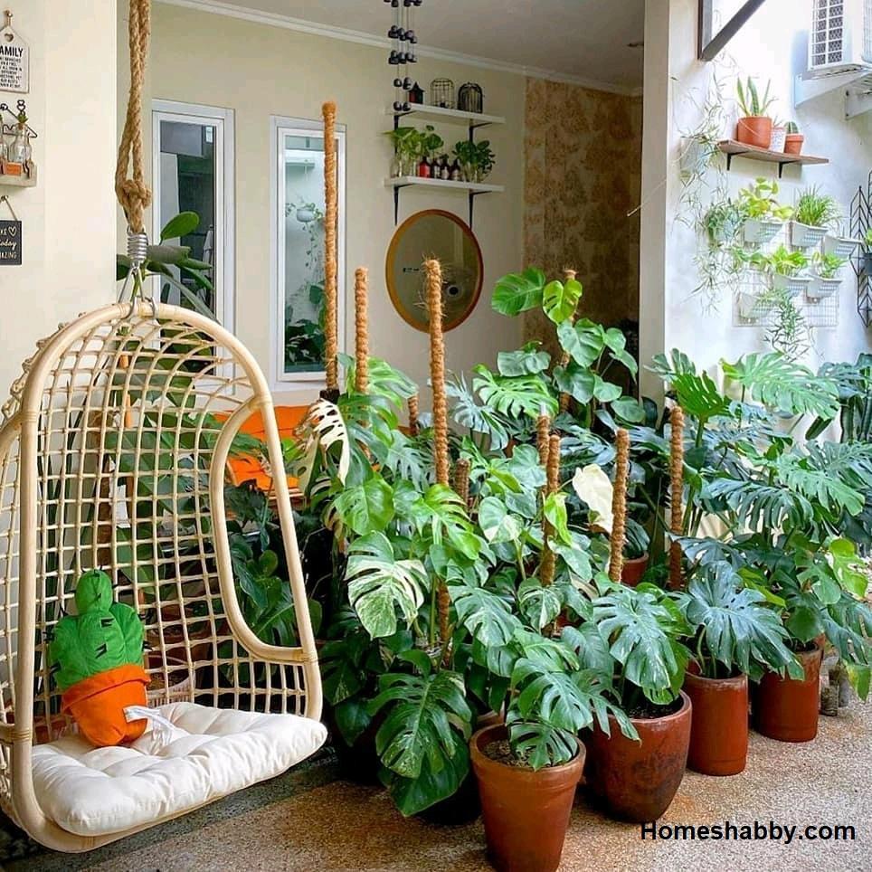 6 Tanaman Asri Cocok Untuk Taman Teras Belakang Rumah Homeshabby Com Design Home Plans Home Decorating And Interior Design