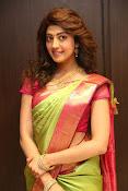 pranitha glam pics in saree-thumbnail-9
