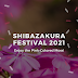 Shibazakura Festival 2021 April - May | Download Images, Photos & Wallpapaers