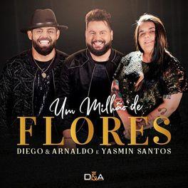 Download Música Um Milhão de Flores - Diego e Arnaldo part Yasmin Santos Mp3