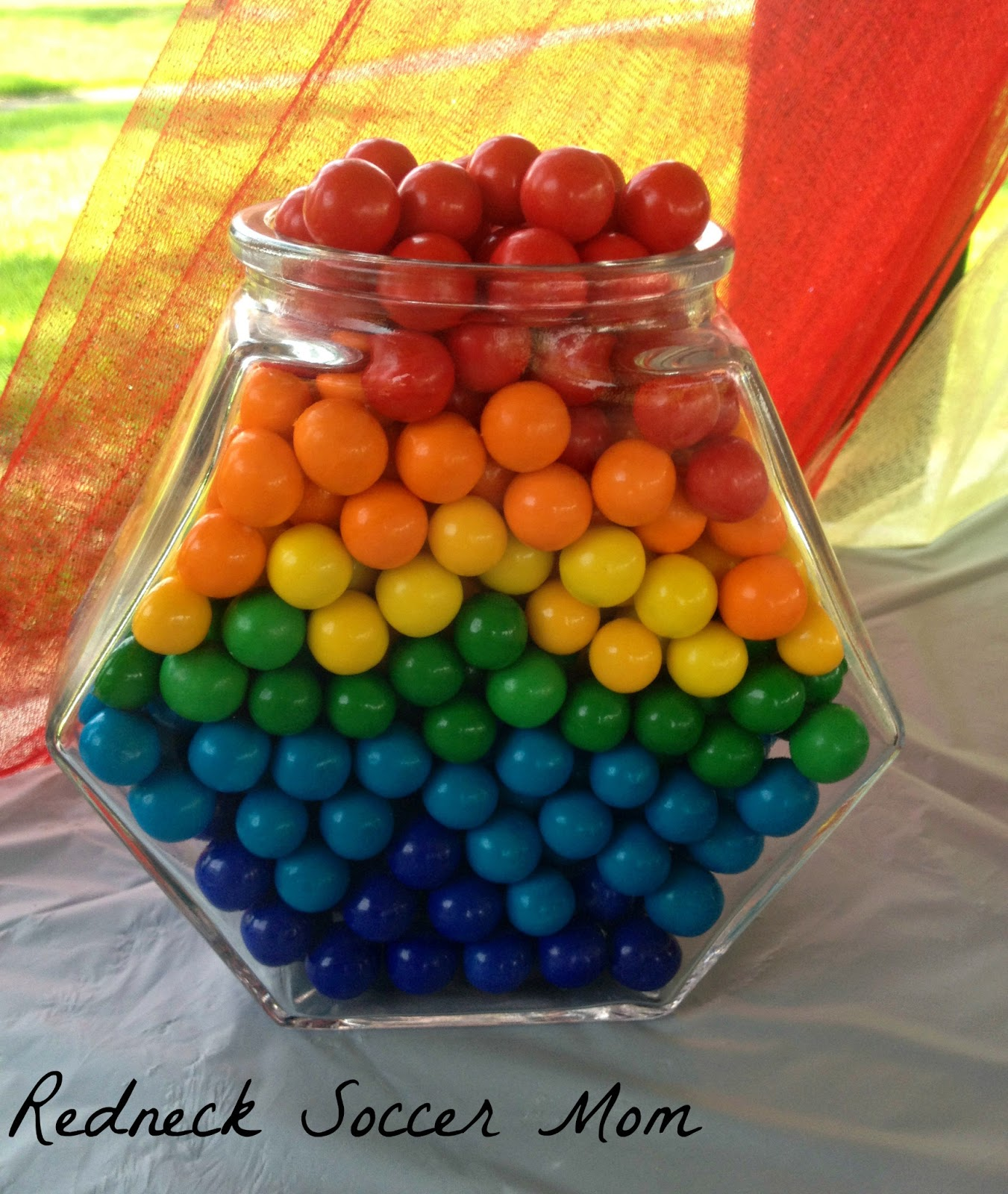 Redneck Soccer Mom Rainbow Birthday Party