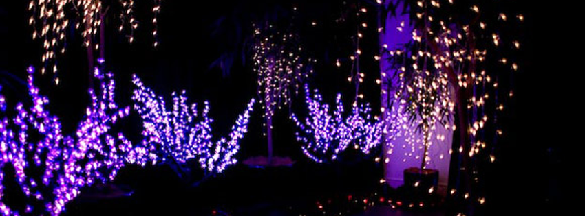 christmas lights facebook covers - photo #22