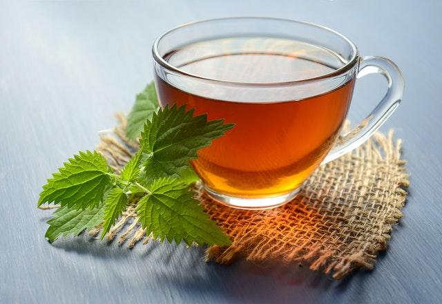 drinking green tea benefits