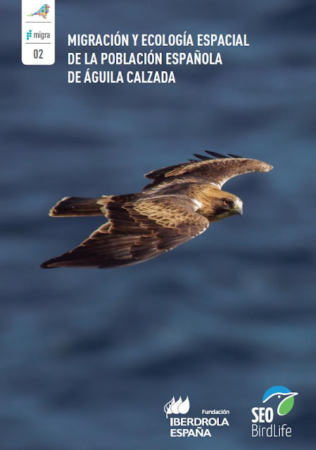 http://www.seo.org/boletin/seguimiento/migracion/02_aguila_calzada/pdf/Migra%202%20calzada.pdf