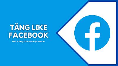 Mua Like Facebook, Hướng Dẫn Mua Like Tại VSM