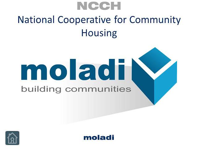 www.moladi.co.za